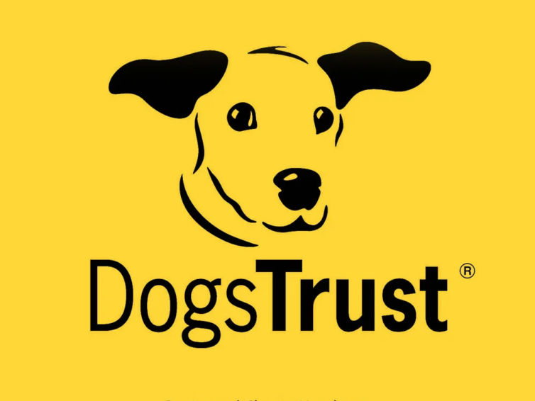 Dogs Trust Darlington – HVAC BeMS System
